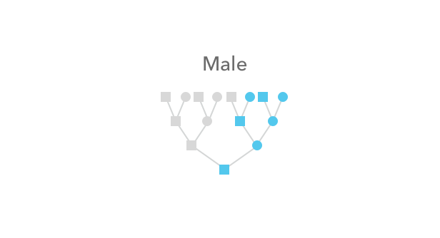 x_chromosome_Male.png